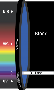 MidOpt_Bi405_Trans_Graphic
