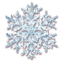 visual-snowflake